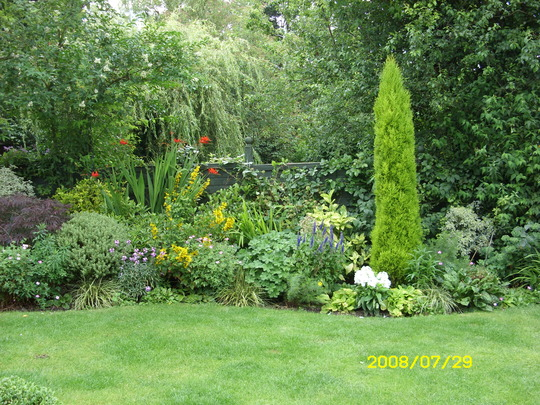 Late August Garden Border,