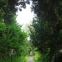 Path to Bosham church