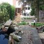 New Garden Photo