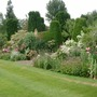 mixed border in June