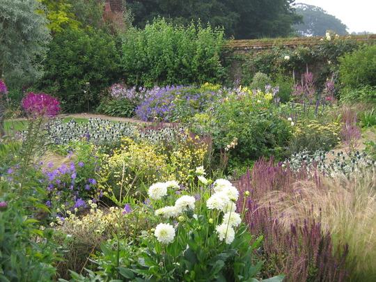 walled garden in july