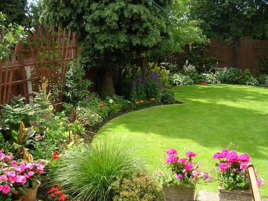 Summer in a pocketsize garden