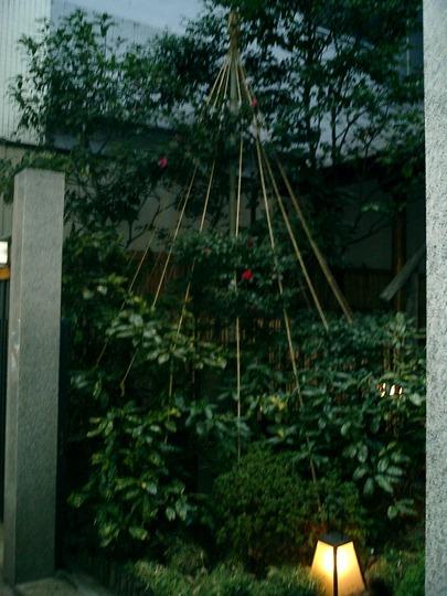 climbing display