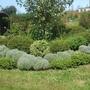 round garden