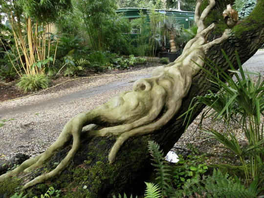 Treeman by Nosey Potter