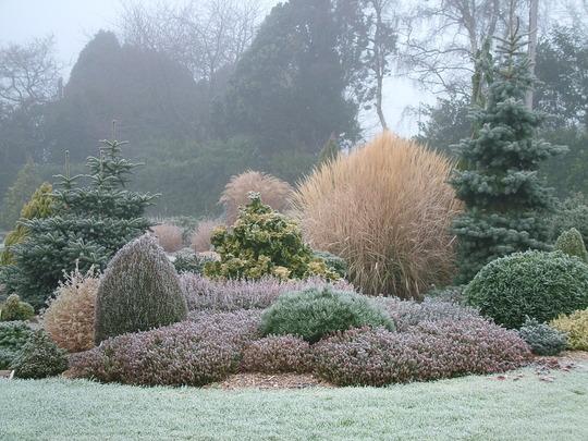 Foxhollow in Winter