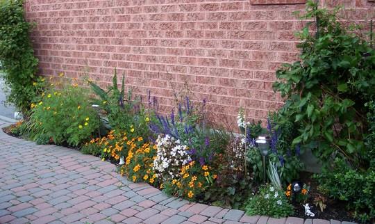 Front Garden (Blog G)