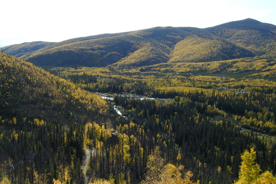 Valley to the south and Chena river