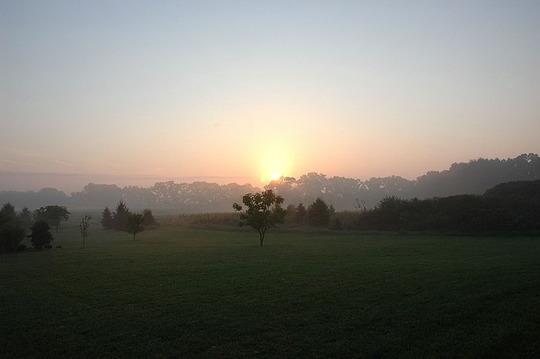 Front Yard Sunrise