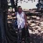 Israel_olivetrees