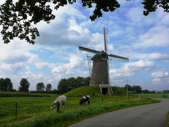 Trip to Holland. Windmill