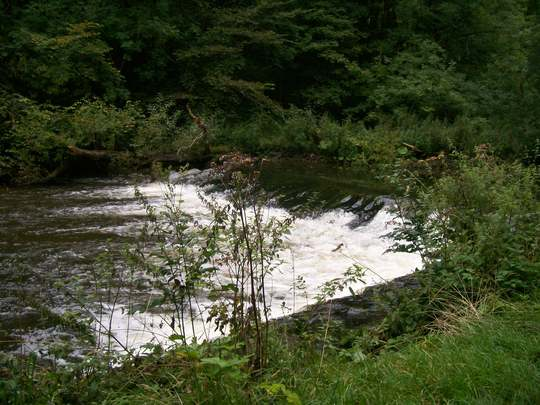 The river Wye, Millers Dale, Derbyshire