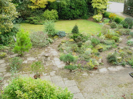 Front Garden from above