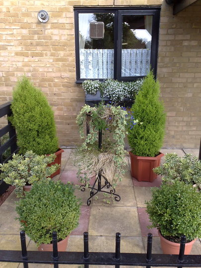 My nan's front garden