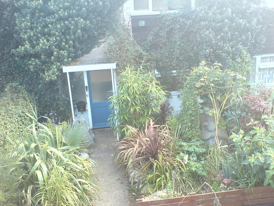 my exploding front garden