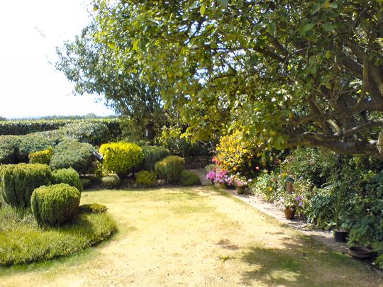 Rear Garden - Right Border - Summer 2006