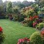 Upper_garden_21_september
