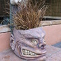punk planter