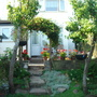 Our back garden