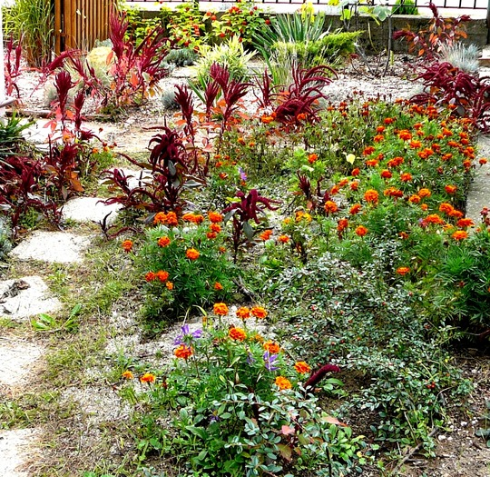 Side garden in September