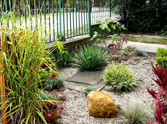 Landscaping front garden ideas gravel for Garden design ideas using gravel