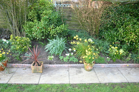Rear garden Spring 2005 right border 2