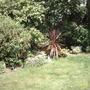 Garden_in_july_08_001