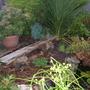 pond bench