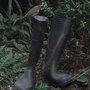 Robin_and_wellies