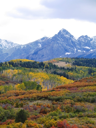 Colorado Changing Colors