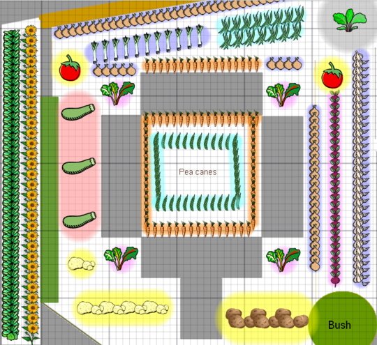 My front garden plan 2006