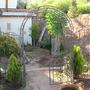 Side Yard - spring 2008