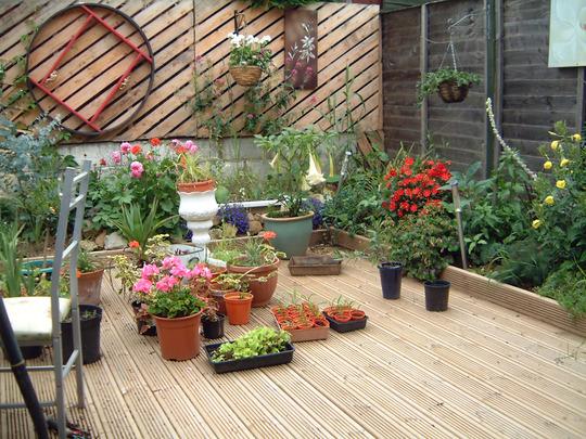 garden_010.jpg