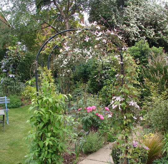 More Borders (Clematis over arch)
