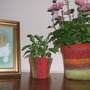 knitted plant pot covers