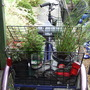Tricycle plant holder!