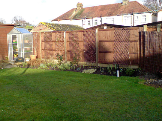 cottage garden bed - far end in front of the greenhouse