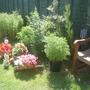 Garden_07_011