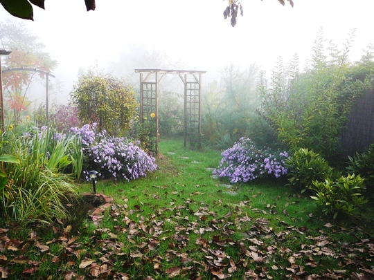 Misty October morning in Hungary no 1