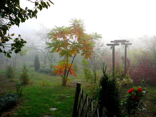 Misty October morning in Hungary no 4
