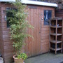Love me love my shed!