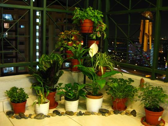 Balcony @ Night