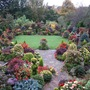 Upper_garden_october_15