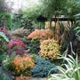 Middle garden pagoda October 15