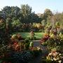 Upper_garden_autumn_colour