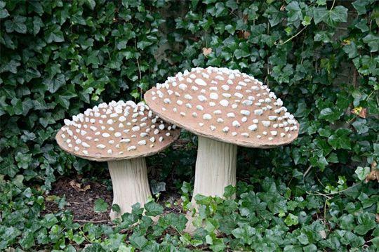flyagaric mushrooms