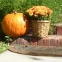 Pumpkin and fall flowers.