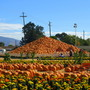 Pyramid of pumpkins