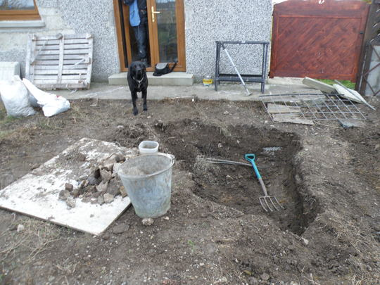 lassie says i didn't dig that one