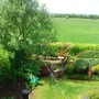 Left side of the rear garden - May 2007